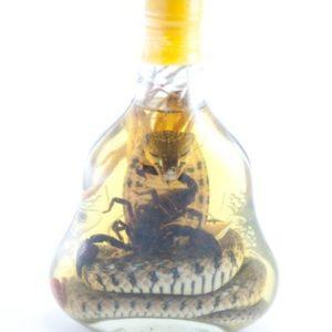 Snake Wine Liquor Big Bottle Vietnamese Wine